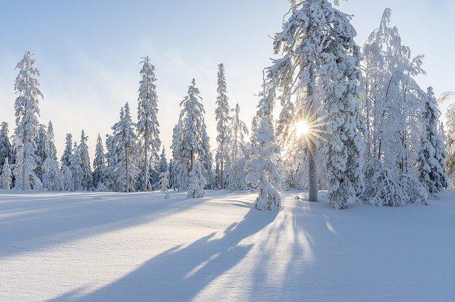 winter-4830285_640